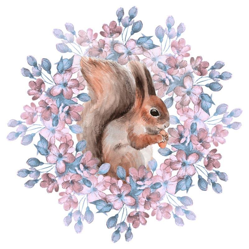 Wiewiórka i kwiaty ilustracji