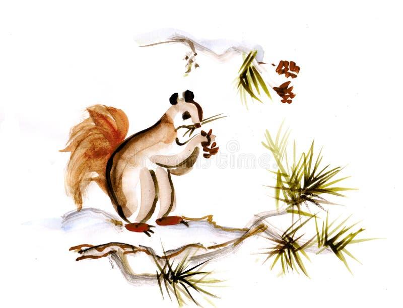 Wiewiórka na gałąź ilustracja wektor