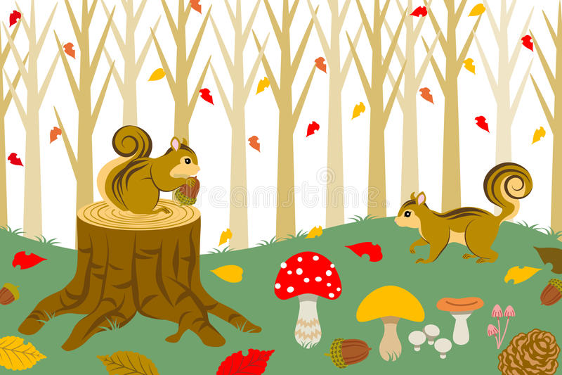 Wiewiórka Zbiera w jesień lesie royalty ilustracja