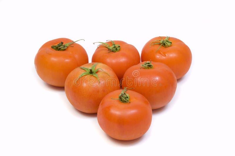 Download świezi pomidory obraz stock. Obraz złożonej z świeży - 13327043