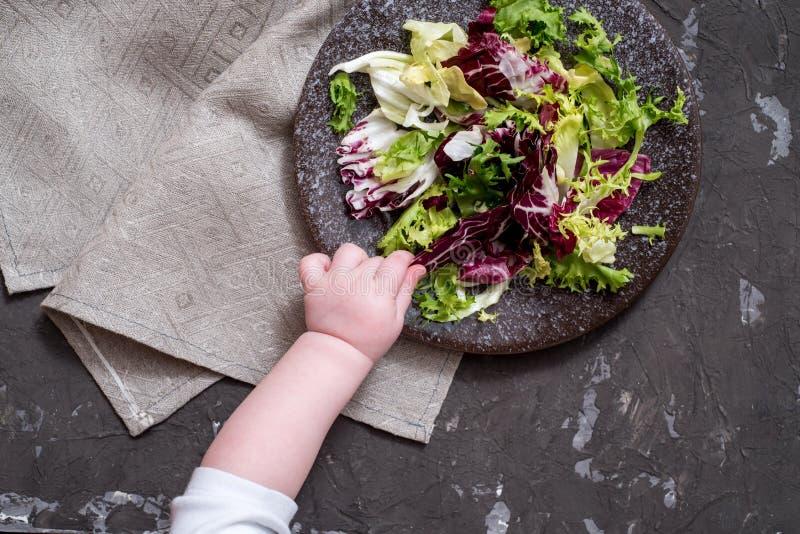 ?wiezi warzywa - czerwona kapusta, buraki, ober?yna, pieprze, czosnek, pomidory, ziele na ciemnym tle surowe sk?adnik?w Jedzenie obrazy stock