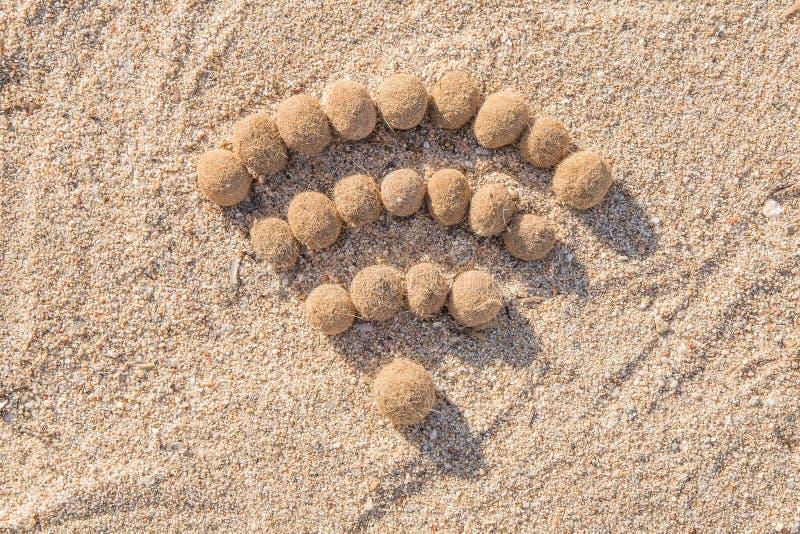 Wifi на пляже стоковые изображения
