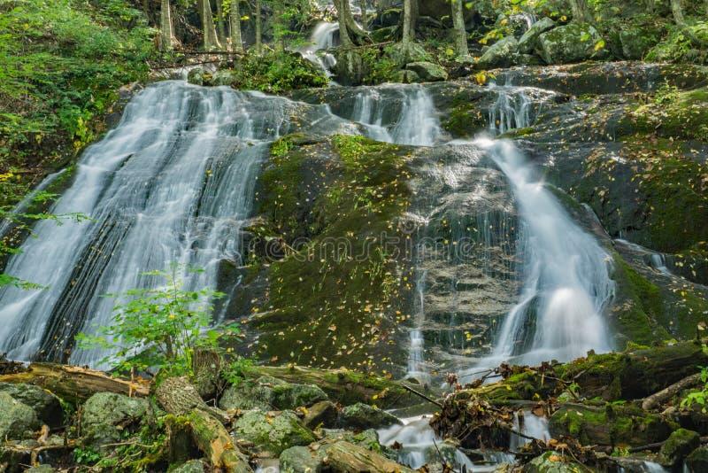 Wigwam Spada w Blue Ridge Mountains Virginia, usa zdjęcie royalty free