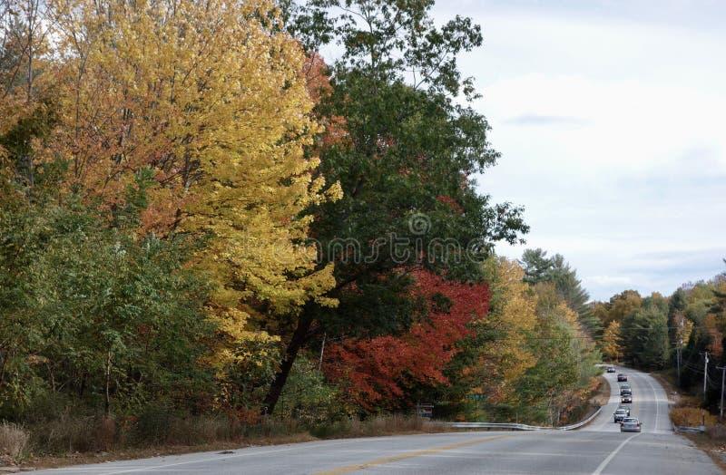 Wijąca górkowata wiejska droga w jesieni fotografia stock