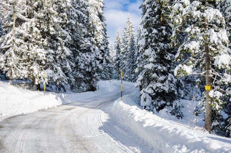 Wijąca Halna droga przez zima lasu fotografia royalty free