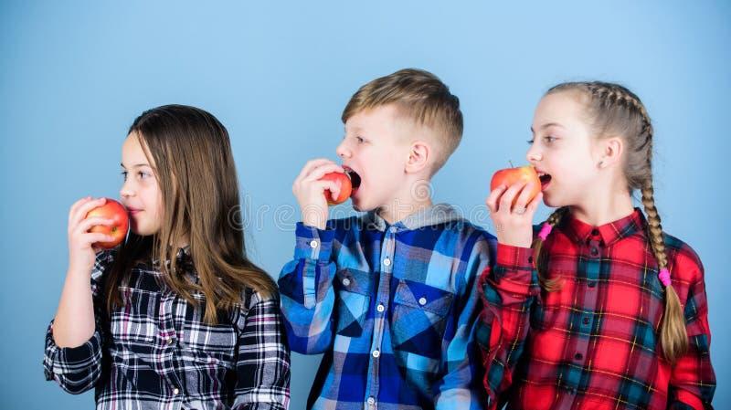 Wij geloven in het unjunking van ons voedsel en ons leven Voedsel voor kinderen De kleine jonge geitjes genieten van etend natuur royalty-vrije stock afbeelding