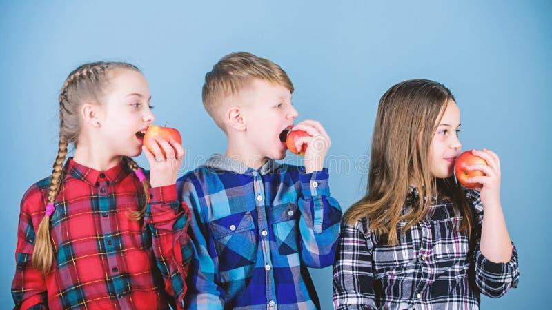 Wij geloven in het unjunking van ons voedsel en ons leven Voedsel voor kinderen De kleine jonge geitjes genieten van etend natuur stock fotografie