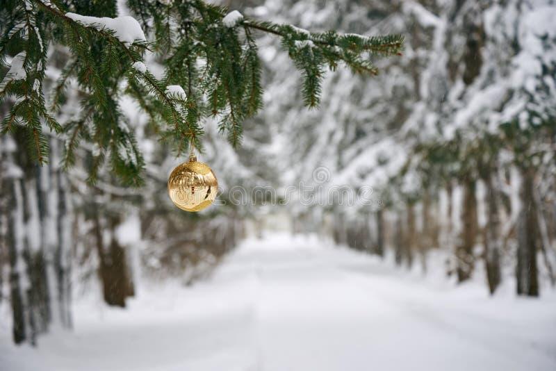 Wij treffen voor het Nieuwjaar en Kerstmis voorbereidingen royalty-vrije stock afbeeldingen