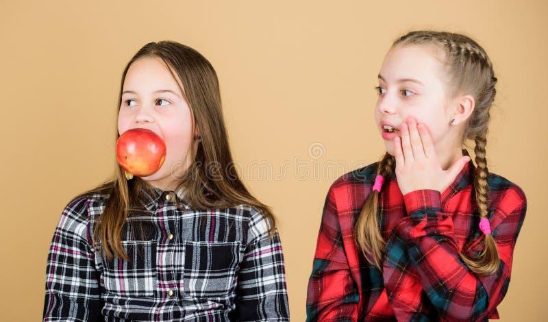Wij zijn op gezonde voeding Gezonde het op dieet zijn en vitaminevoeding De meisjesvrienden eten appelsnack terwijl het ontspanne royalty-vrije stock foto's