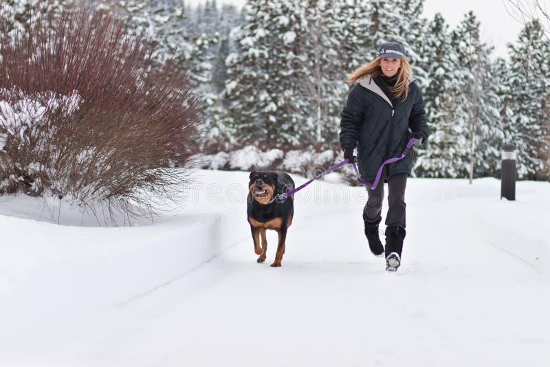 Wijfje dat een hond loopt royalty-vrije stock fotografie