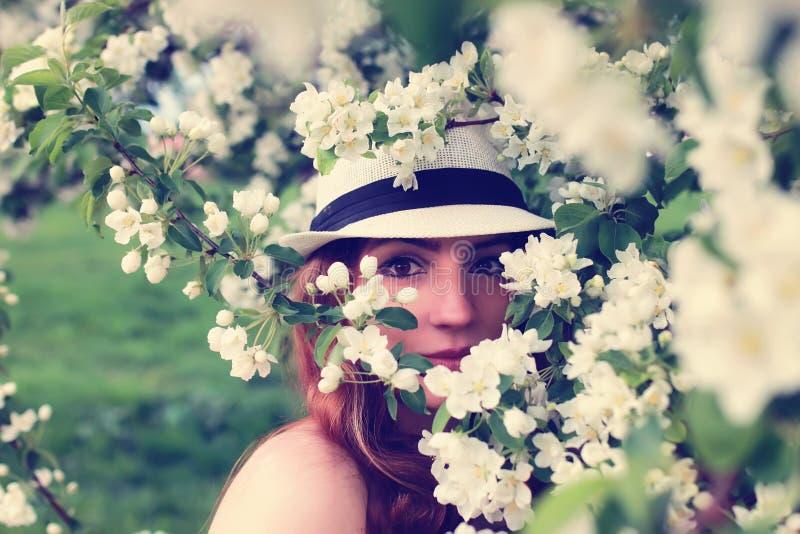 Download Wijfje In De Bloem Van De Appelboom Stock Afbeelding - Afbeelding bestaande uit wijfje, model: 107706797
