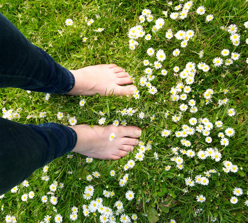 Wijfje die zich blootvoets op groen gras en witte bloemen bevinden royalty-vrije stock afbeelding