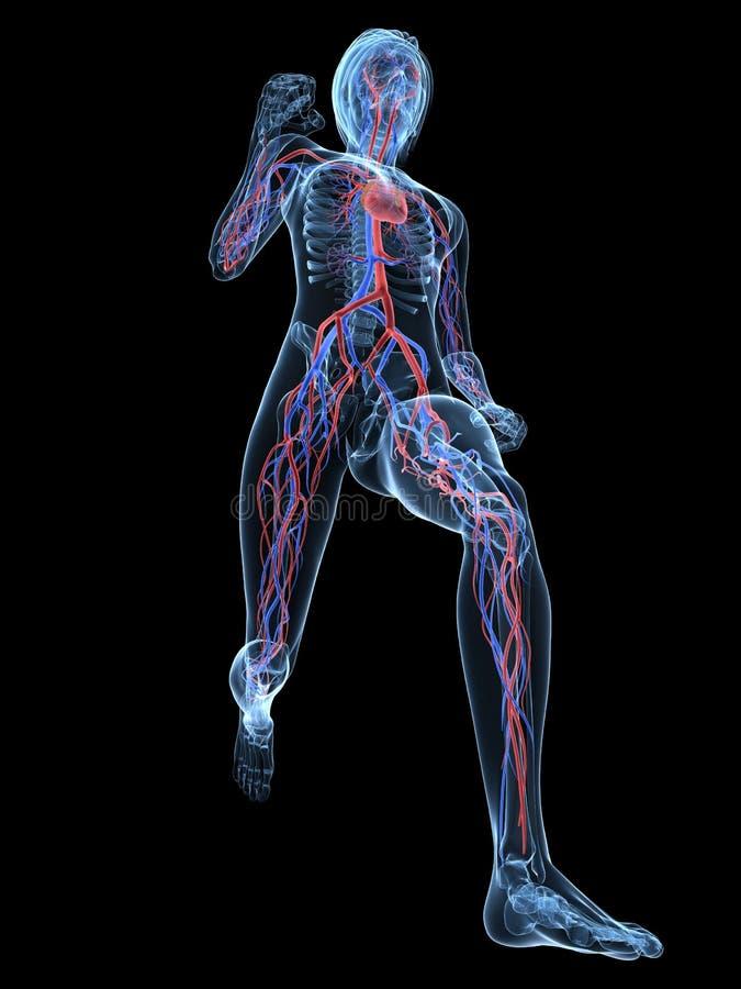 Wijfje jogger vector illustratie