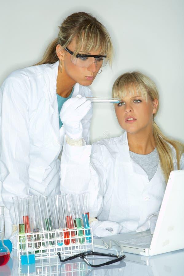 Wijfje in laboratorium stock foto