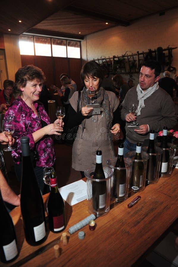 Wijn die verticaal proeven royalty-vrije stock afbeeldingen