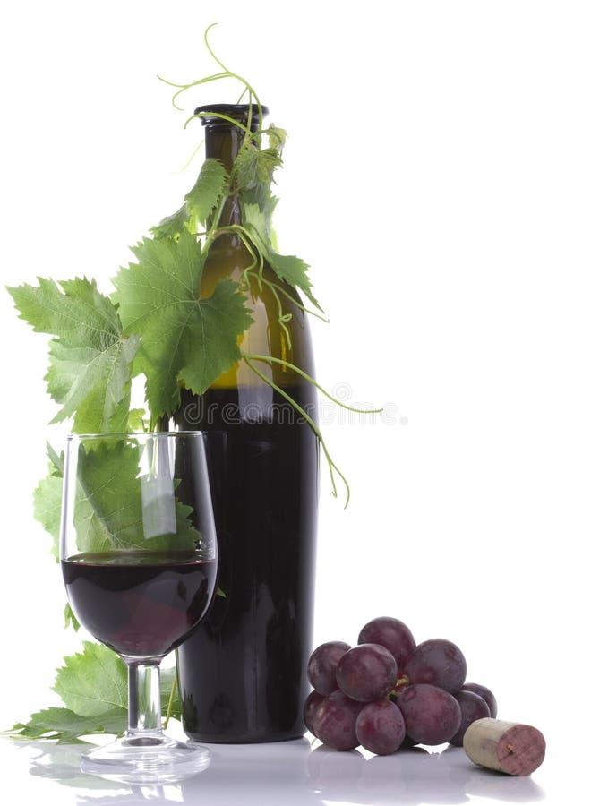 Wijn en de fles van het glas de rode royalty-vrije stock fotografie