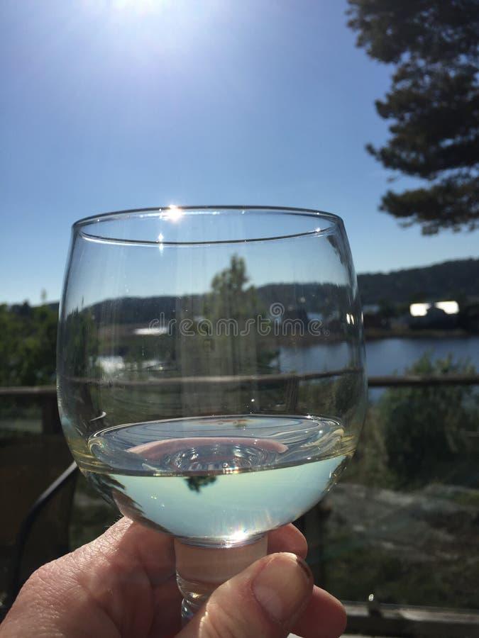 Wijn en de zomer stock foto