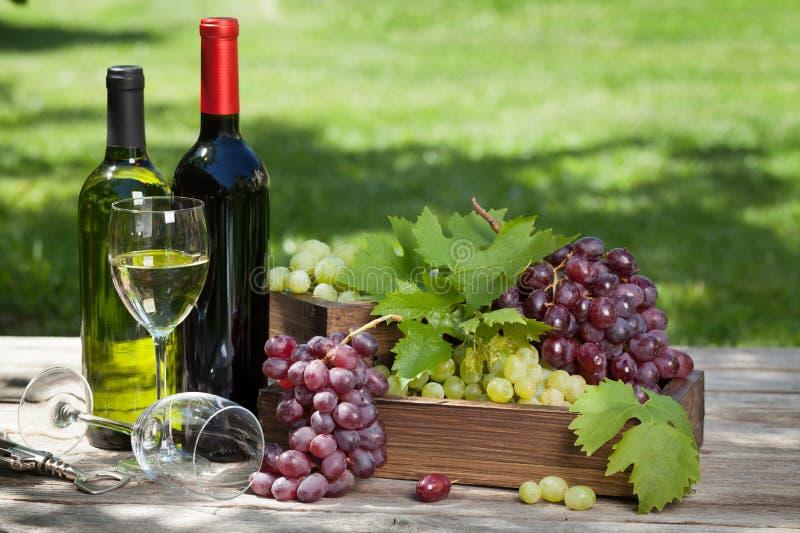 Wijn en druif stock fotografie