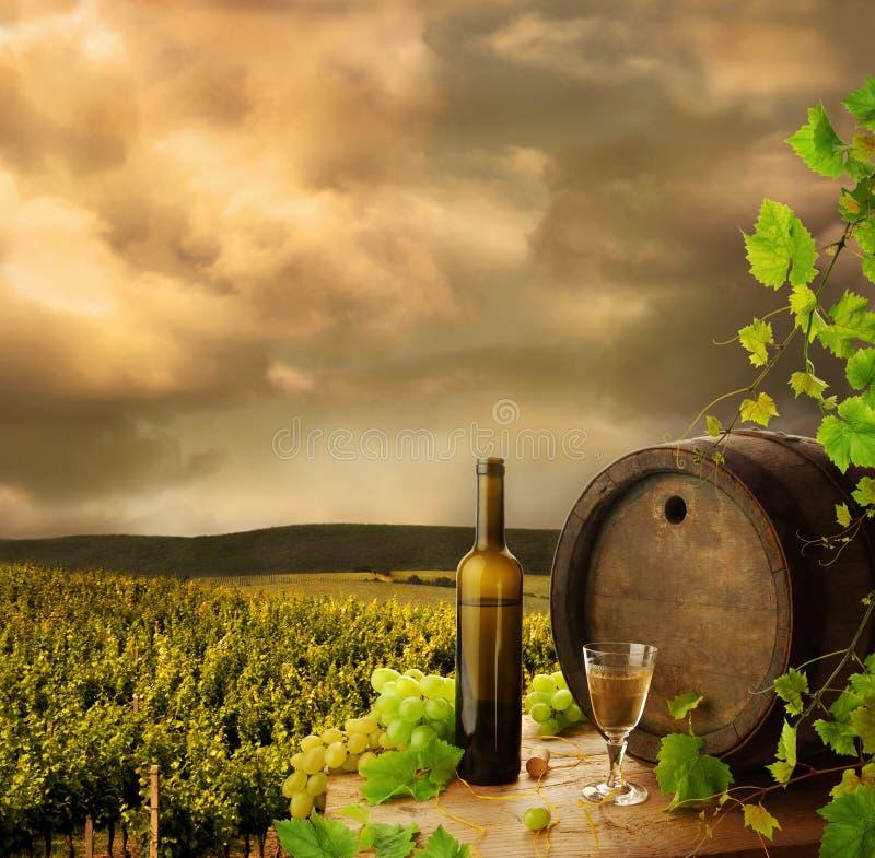 Wijn en wijngaard royalty-vrije stock foto's
