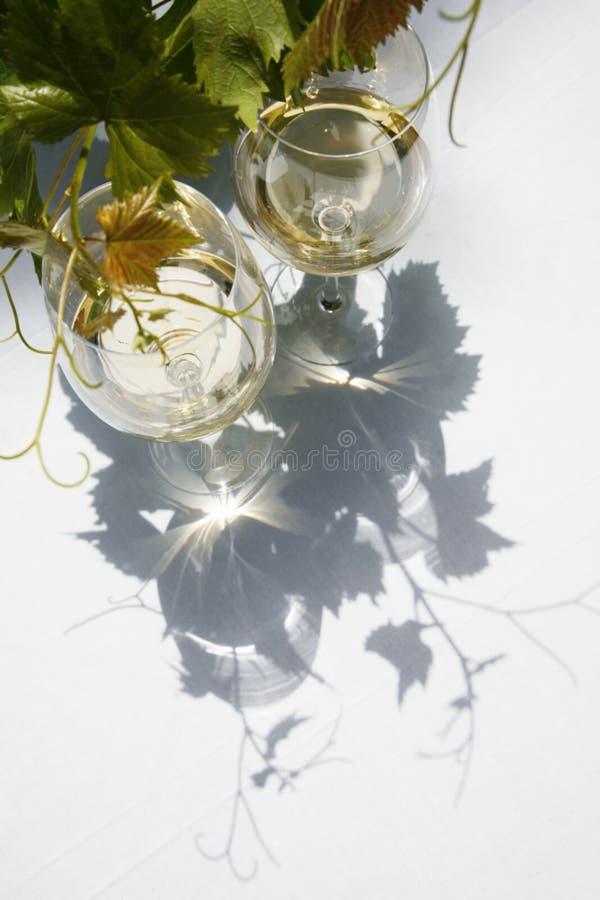 Wijn en Wijnstok stock afbeeldingen