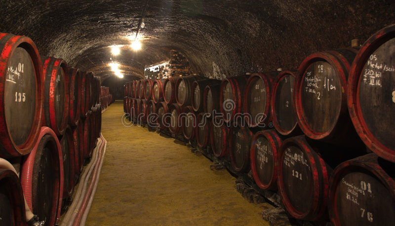 Wijn-kelder royalty-vrije stock fotografie
