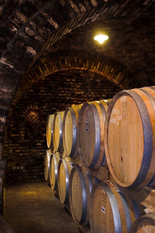 Wijn-kelder royalty-vrije stock afbeeldingen