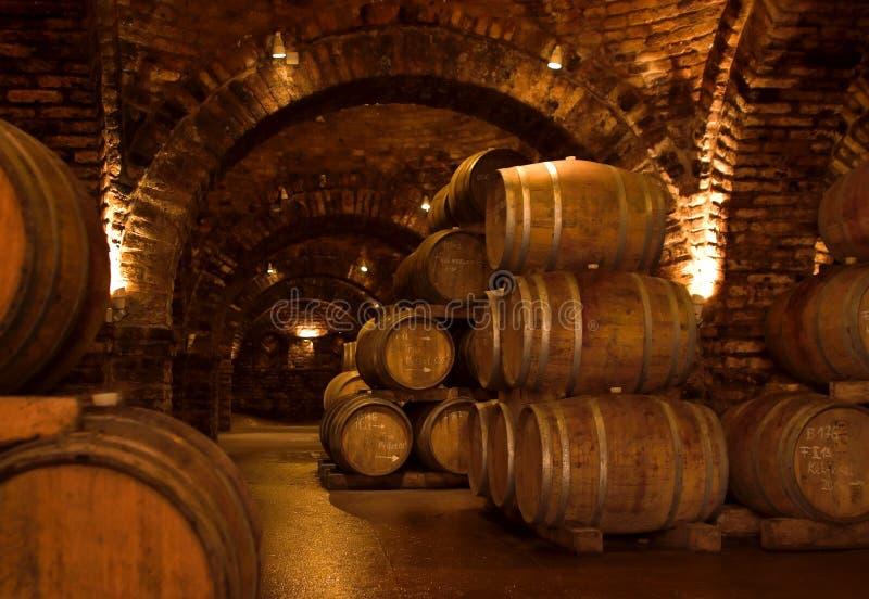 Wijn-kelder royalty-vrije stock foto