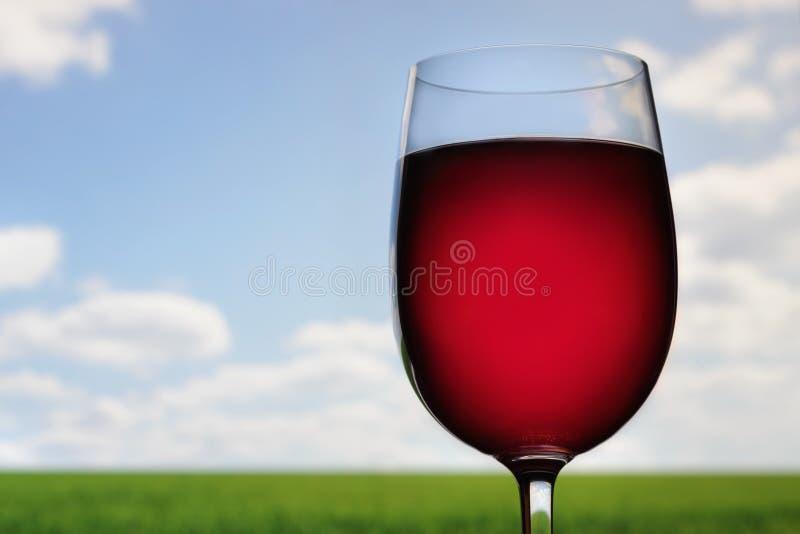 Wijn in openlucht stock afbeelding