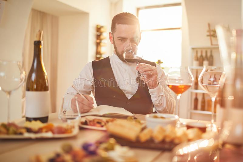 Wijndeskundige in Zonlicht stock afbeelding