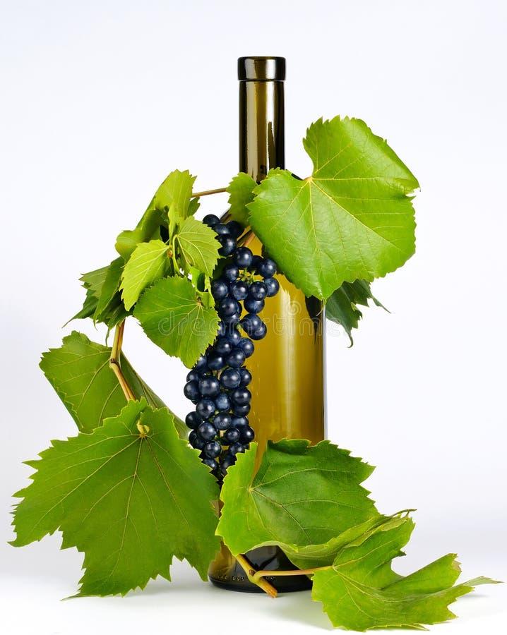 Wijnfles in druivenbladeren stock foto's