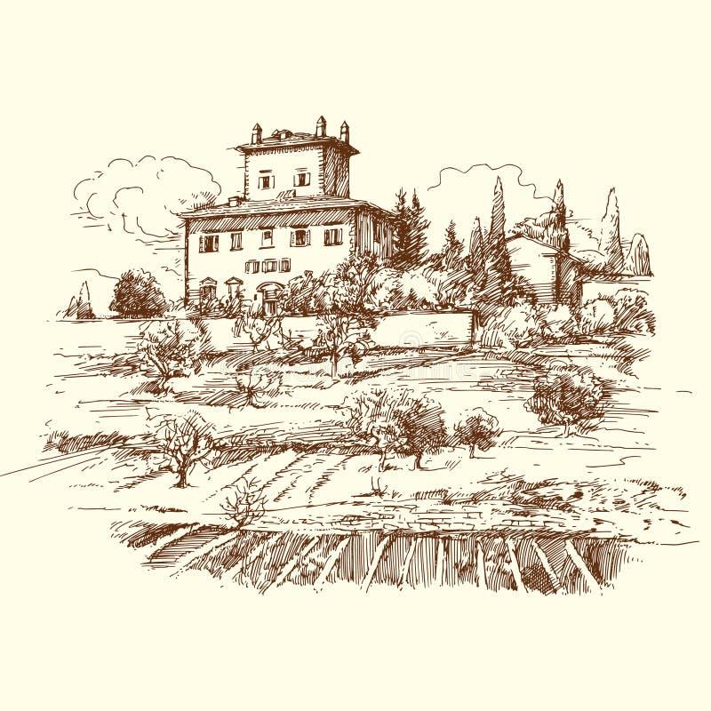 Wijngaard royalty-vrije illustratie