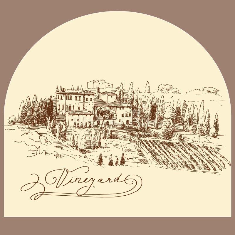 Wijngaard stock illustratie
