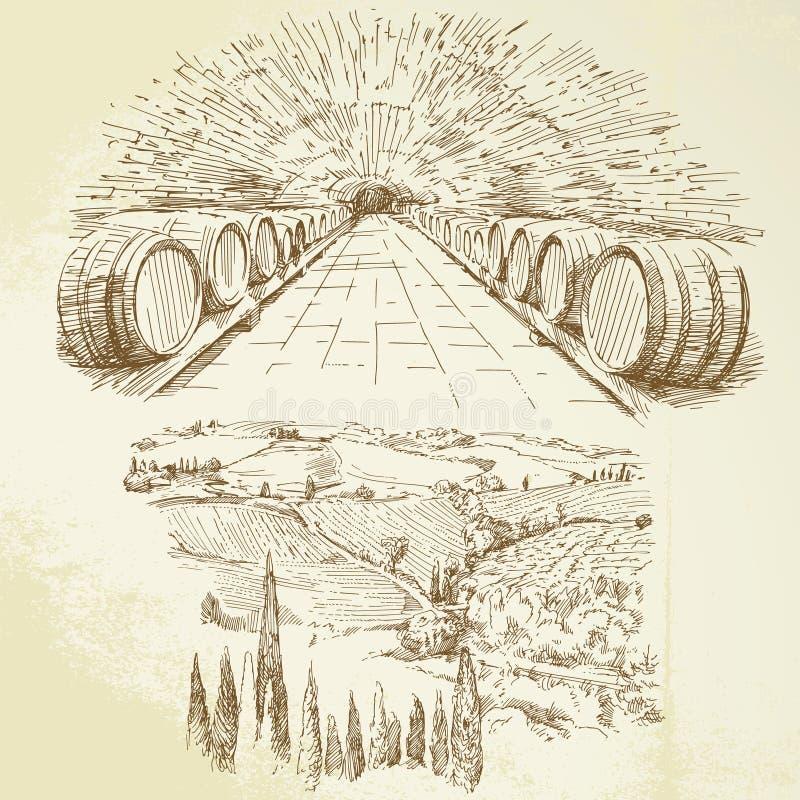 Wijngaard vector illustratie