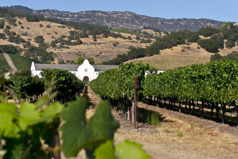 Wijngaard en wijnmakerij in de Vallei Napa stock fotografie