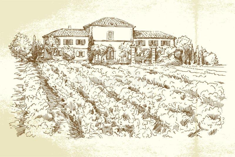 Wijngaard Frankrijk vector illustratie