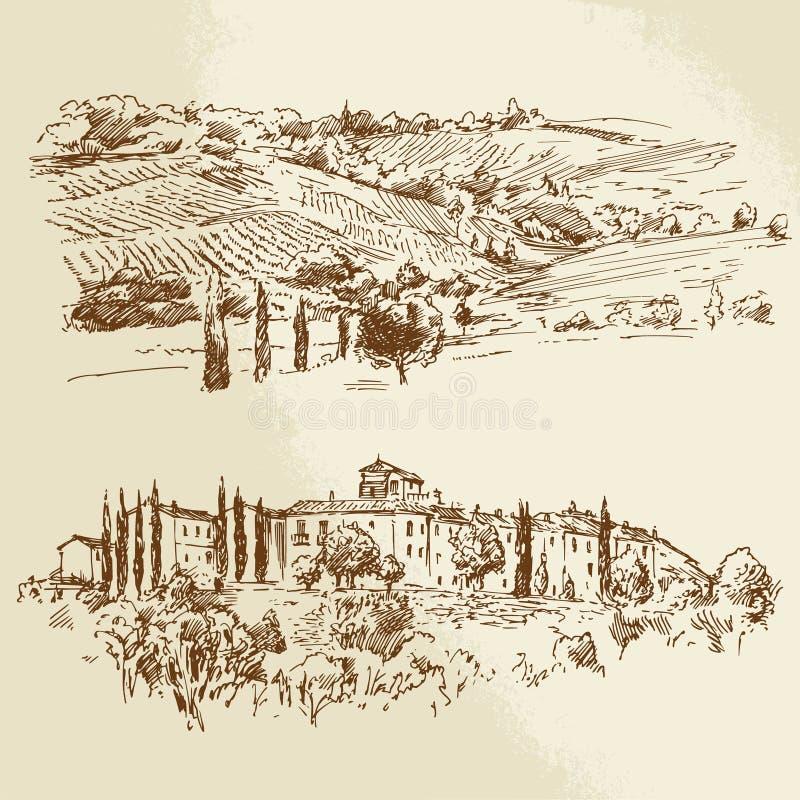 Wijngaard, romantisch landschap stock illustratie