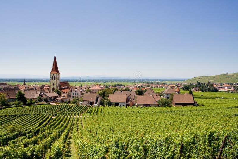 Wijngaarden en dorp royalty-vrije stock afbeeldingen