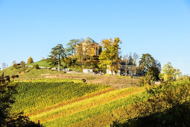 Wijngaarden - mooi landschap van wijngebied royalty-vrije stock fotografie