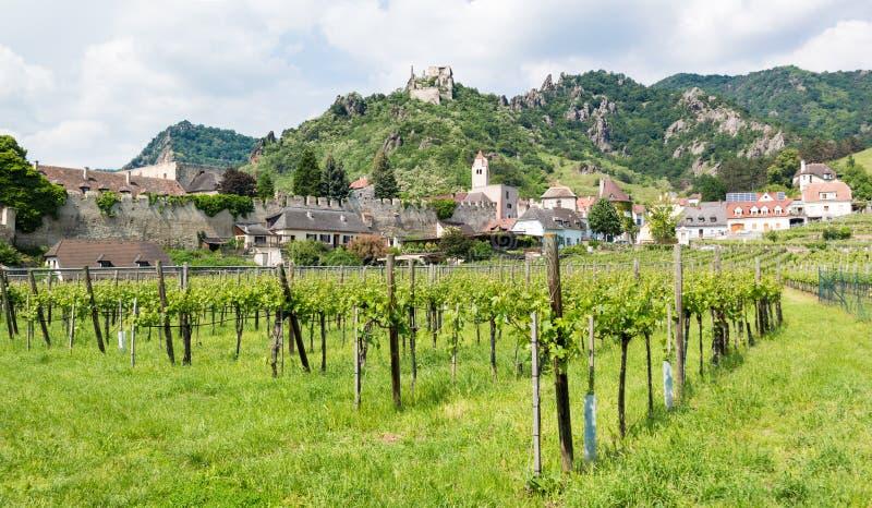 Wijngaarden, muur en oud kasteel van Durnstein in Wachau, Oostenrijk royalty-vrije stock afbeeldingen