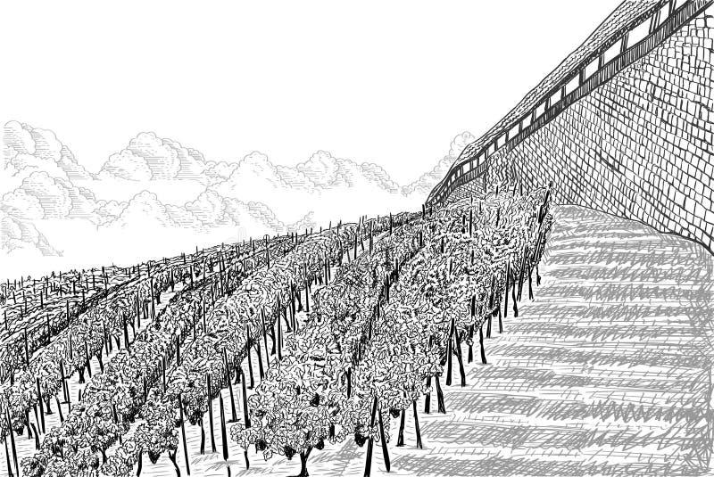 Wijngaardlandschap met wolken en kasteelmuur Hand getrokken schets vectorillustratie op wit vector illustratie