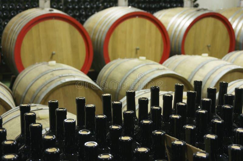 Wijnkelder met houten vaten en gevulde glasflessen 3 stock foto