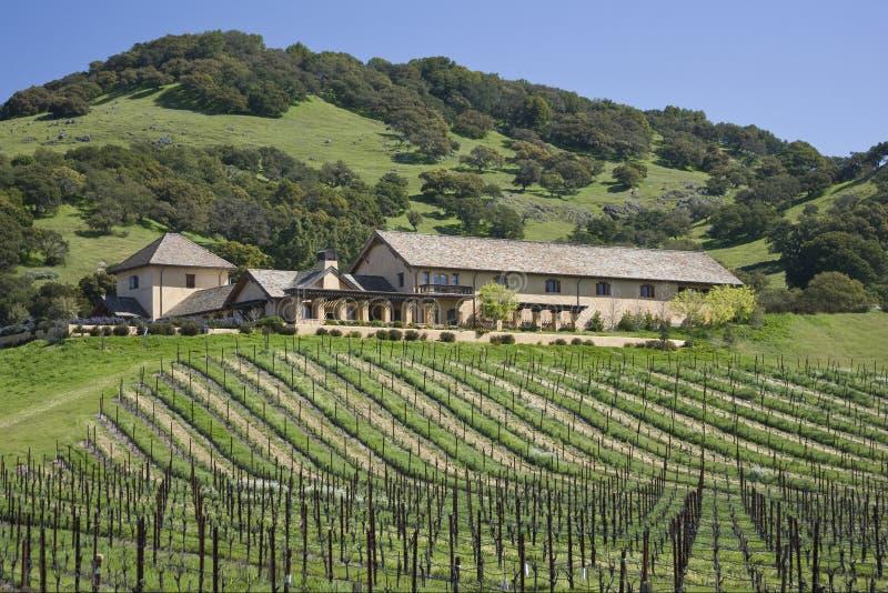 Wijnmakerij boven op een heuvel stock foto's