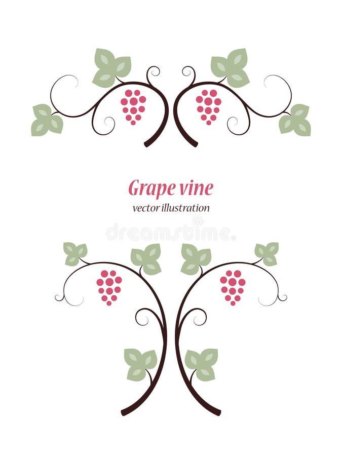 Wijnstokken en decoratieachtergrond vector illustratie