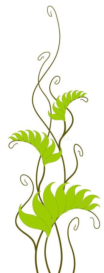 Wijnstokken en groene bladeren stock illustratie