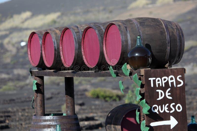 Wijnvatten op Lanzarote stock foto's