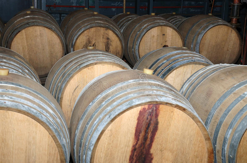 Wijnvatten in regeling die in een kelder wachten stock foto