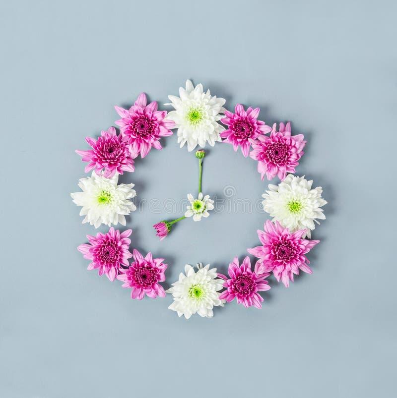 Wijzerplaat van chrysant wordt gemaakt die royalty-vrije stock foto's