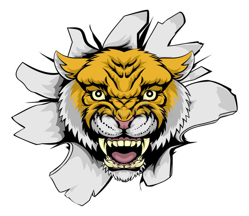 Wilcat Cougar Ripping Out vector illustration