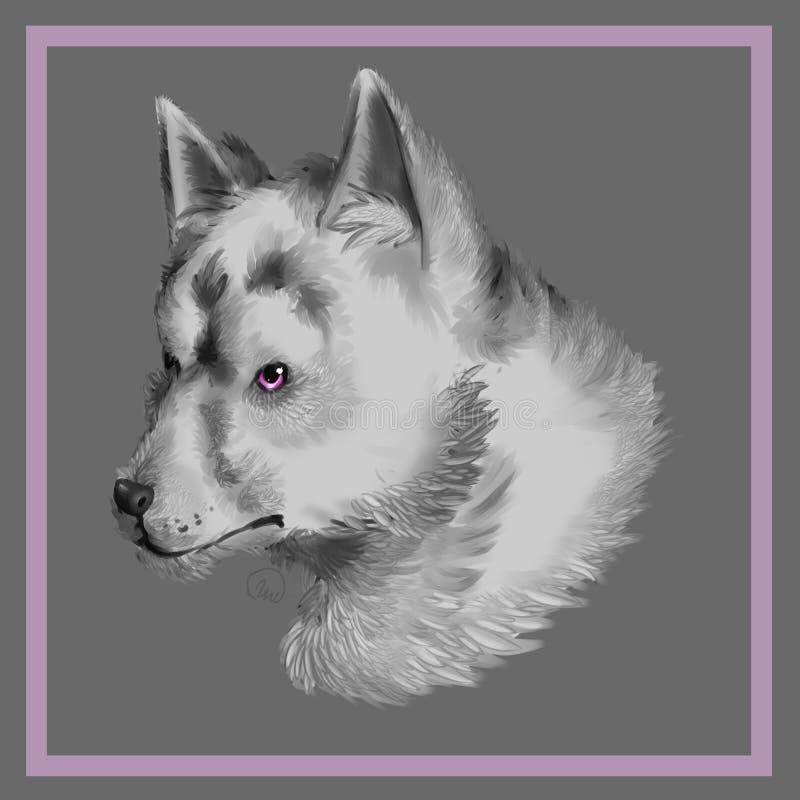 Wilczy pies obraz stock
