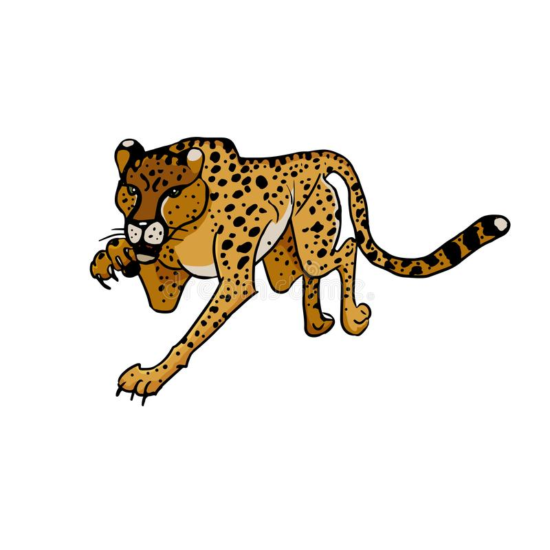 Wild african animals. Cheetah. Hand drawn vector illustration stock illustration